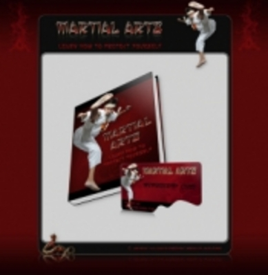 Product picture Martial Arts Ebook With PLR